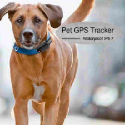 Aminal GPS tracker