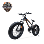 Evo E-Bike1